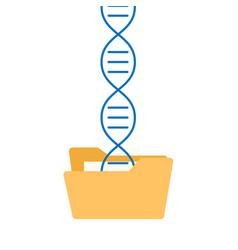dna sequencing genome information saving vector image vector image
