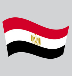 flag of egypt waving on gray background vector image vector image