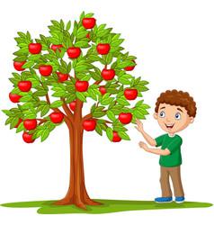 cartoon boy picking apples from apple tree vector image