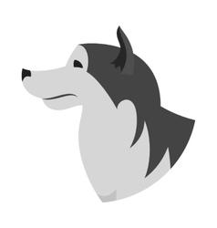 Dog head alaskan malamute vector image