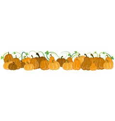 Pumpkins with sprouts and leaves vector
