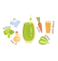 recipe for a green vegetable smoothie vector image