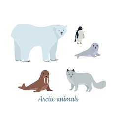 Set of Arctic Animals in Flat Design vector image
