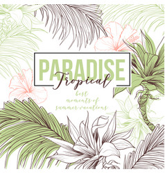 tropical hand drawn web banner vector image