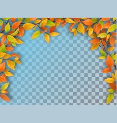 arch from tree branches vector image