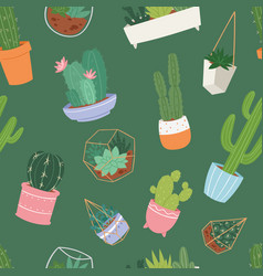 Cactus and succulent flower green home plant vector
