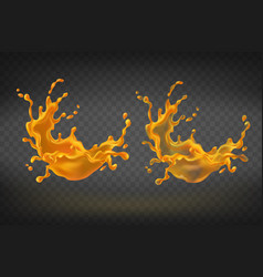 orange splashing translucent juice vector image