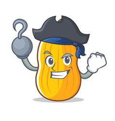 Pirate butternut squash character cartoon vector