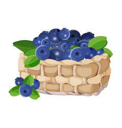 Wicker basket with blueberries realistic vector