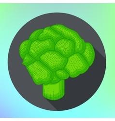 Broccoli flat style pictogram vector image