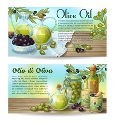 Olive Oil Horizontal Concepts vector image vector image