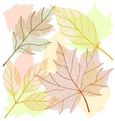 Autumn leaf set vector image vector image