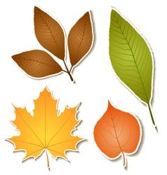 Autumn leaf sticker set vector image
