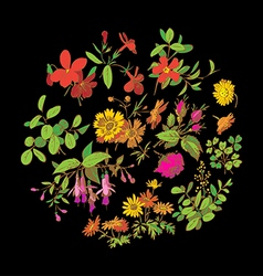 Meadow flower and leaf wreath isolated on black vector image