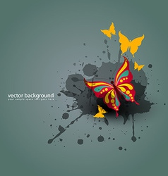 butterfy background vector image