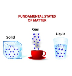 fundamental states of matter vector image