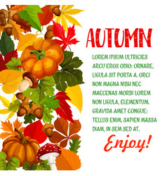Autumn season poster with pumpkin and fall leaf vector