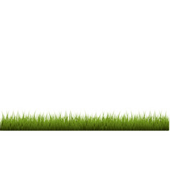 grass border isolated white background vector image