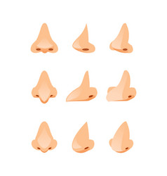 Noses in different angles vector