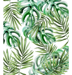 palm leaves pattern watercolor tropic vector image