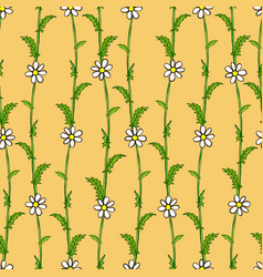 Seamless pattern of white daisies on green stems vector