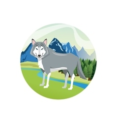 Wolf icon Landscape background graphic vector