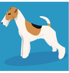 wire fox terrier dog vector image vector image