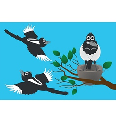 magpies vector image vector image
