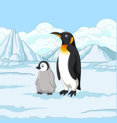 Cartoon mother and baby penguin on snowy field vector