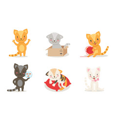 cute kittens cartoon characters set adorable vector image