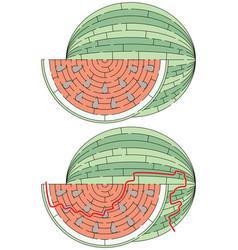 easy watermelon maze vector image