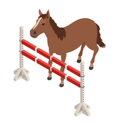 Equestrian sport icon isometric style vector
