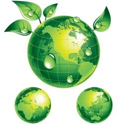 Flourishing globe vector image