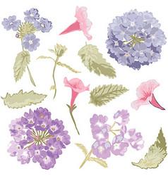 Hand drawn flowers set vector