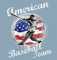baseball us flag vector image