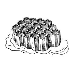 honeycomb drawing hand drawn honey vector image