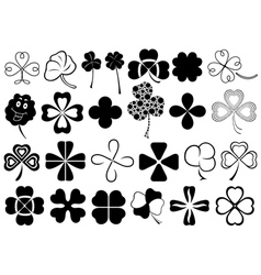 Set of different clovers set vector image vector image