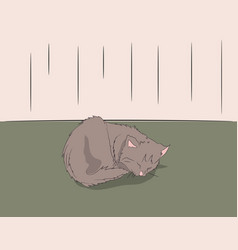 Cat lies in the room vector