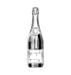 Hand drawn champagne bottle sparkling wine vector