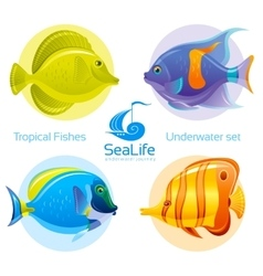 Icon set with tropical fishes - surgeonfish vector