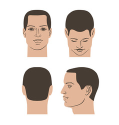 Man hairstyle head set vector