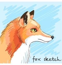 Portrait of predatory fox hand-drawn Individual vector