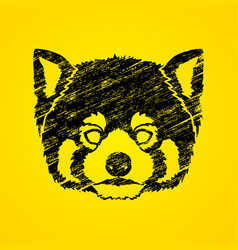 red panda head cartoon bear face vector image