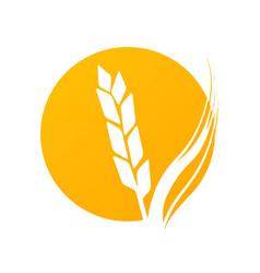 golden logotype round form vector image