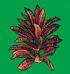 tropical leaves jungle collection hand painted vector image vector image