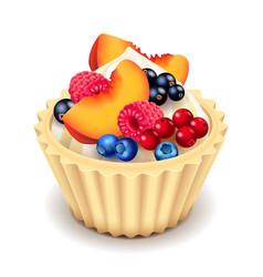 fruit cupcake isolated on white vector image vector image