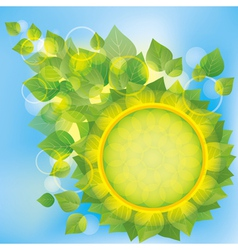 Abstract eco background with green leaves vector image vector image