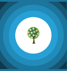 isolated garden flat icon tree element can vector image