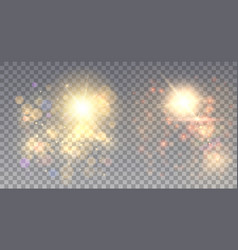 two shining sparkles vector image