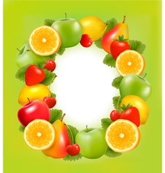 fresh fruit in frame green background vector image